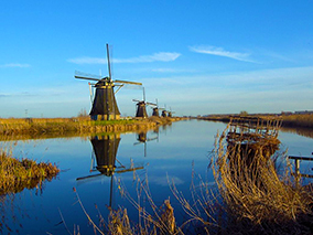 Kinderdijk Beauty